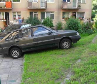 Mistrzowie parkowania na Pomorzu. Trzy miejsca zamiast jednego? Często parkujemy jak łosie!