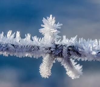 Jaka będzie zima 2020/2021? Kiedy spadnie pierwszy śnieg?