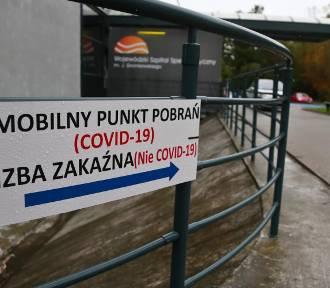 7482 nowych przypadków zakażeń w Polsce. W Lubuskiem najmniej w kraju