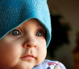 Powiat tczewski. Ile urodzeń i ile zgonów w 2016 r.? Jakie imiona najchętniej nadawano dzieciom?