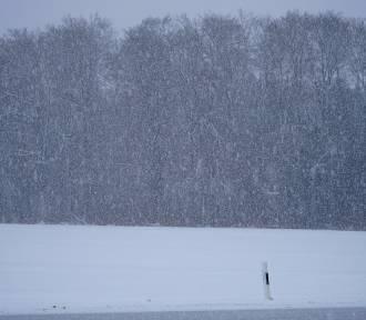 Pogoda Dolny Śląsk. UWAŻAJCIE. 2 stycznia zawieje i zamiecie. Wraca zima [prognoza na 3 dni]