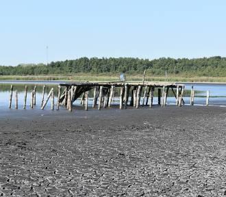 Coraz mniej wody w Jeziorze Jańsko koło Strużki. Kiedyś był tam ośrodek wypoczynkowy