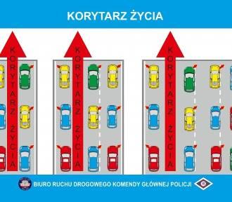 Wchodzą w życie ważne zmiany w kodeksie drogowym