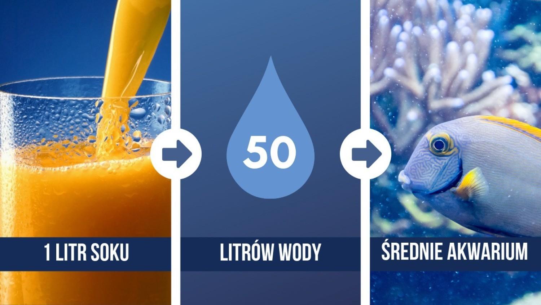 Wyprodukowanie 1 litra soku pomarańczowego pochłania 50 litrów wody