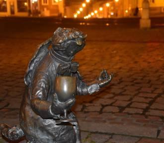 Od Bolesława Chrobrego po Azerbejdżan. Oto pomniki z Pierwszej Stolicy [ZDJĘCIA]