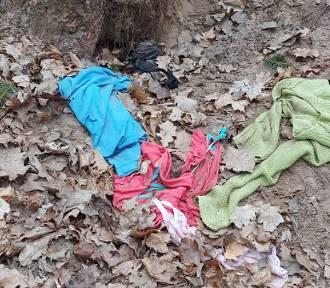 Sterty śmieci w Brodnicy. W lasach i przy ulicach są ubrania, wózki, butelki. Zdjęcia