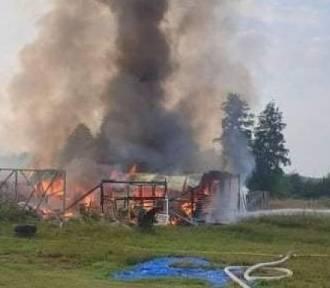 Dąbie. Właściciel zostawił suszące się grzyby i wybuchł pożar!