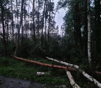 Grad i wiatr przyniósł zniszczenia w powiecie. Ucierpiało wiele miejscowości