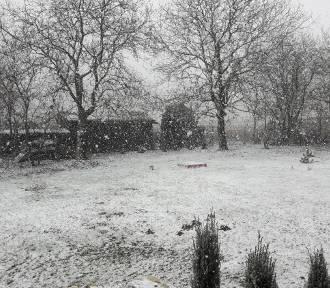 Zima wróciła do Lublina? Tylko na chwilę
