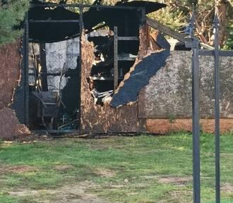 Tragiczny pożar domku letniskowego w powiecie włocławskim. Nie żyją dwie osoby [foto]