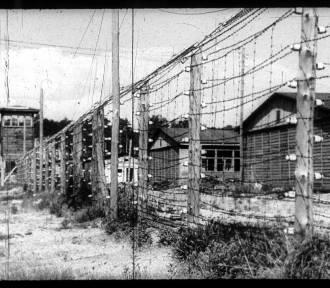 76. rocznica Marszu Śmierci więźniów KL Stutthof.