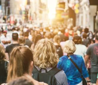 W tych miastach Pomorza mieszka najwięcej ludzi! GUS podał nowe dane
