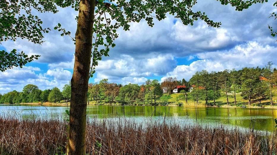 Jezioro Reczynek jest najbardziej znanym z Ośniańskich Jezior
