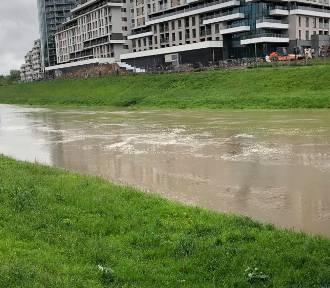 Coraz wyższy poziom wody w Wisłoku [FOTO]