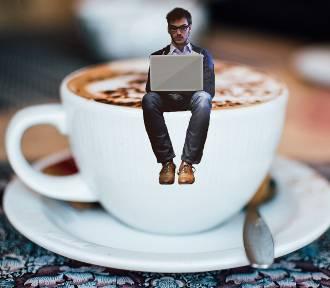 Praca przez internet. 10 sprawdzonych pomysłów na zarabianie