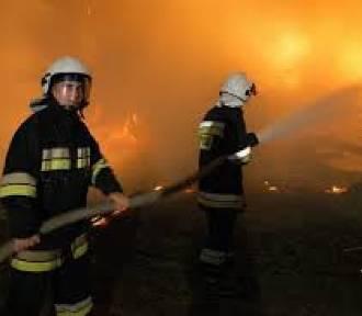 Strażak Roku 2016: Wybieramy strażaków, jednostki i orkiestry dęte. Zgłoszenia jeszcze do 12