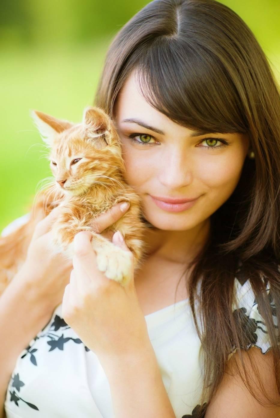 Co Ty wiesz o kotach?