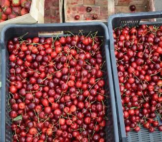 Jakie ceny owoców i warzyw na skierniewickim rynku? Sprawdziliśmy. [ZDJĘCIA]