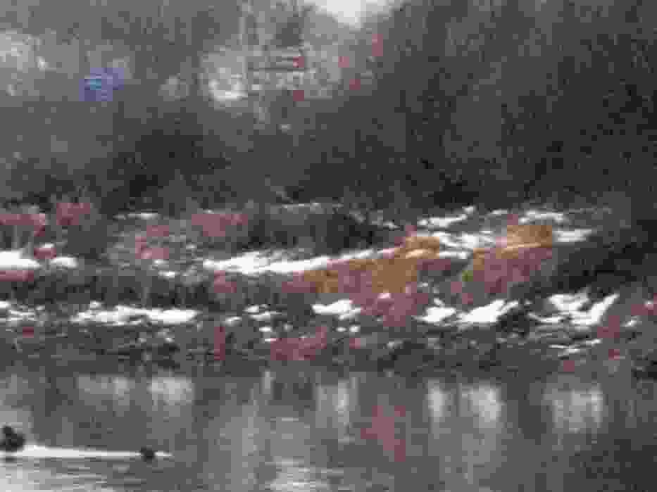 W lewym dolnym rogu pale mostu, widoczne przy niskim poziomie wody
