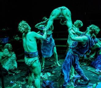 Styczeń w Teatrze Collegium Nobilium