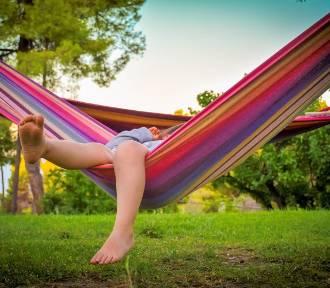 Lato w ogrodzie. O co zadbać, aby wypoczynek był udany?