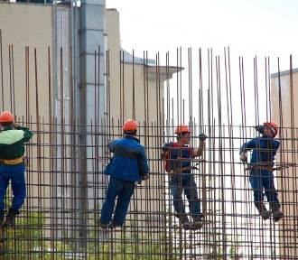 Rośnie liczba cudzoziemców, w śląskim pracują obywatele 90 państw