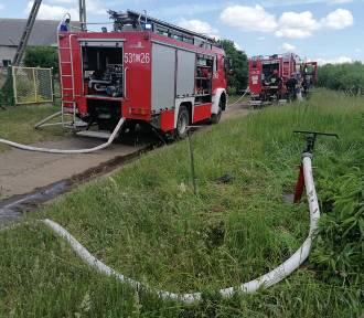 Pożar kontenera i przyczepy w Mikołajkach Pomorskich - w akcji trzy zastępy strażaków