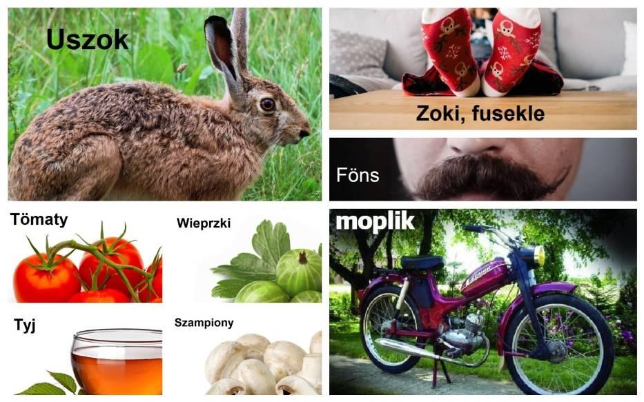 Poznaj słownik śląskich słówek i wyrażeń gwarowych [WSZYSTKIE LITERY]