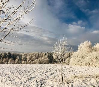 Zima w Cisowej. Zobacz zdjęcia Kamila