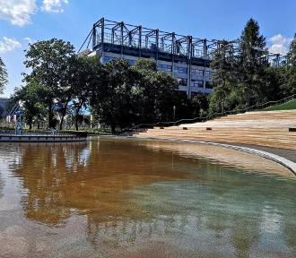 Nowe atrakcje w Parku Jordana. Kiedy zostaną otwarte?