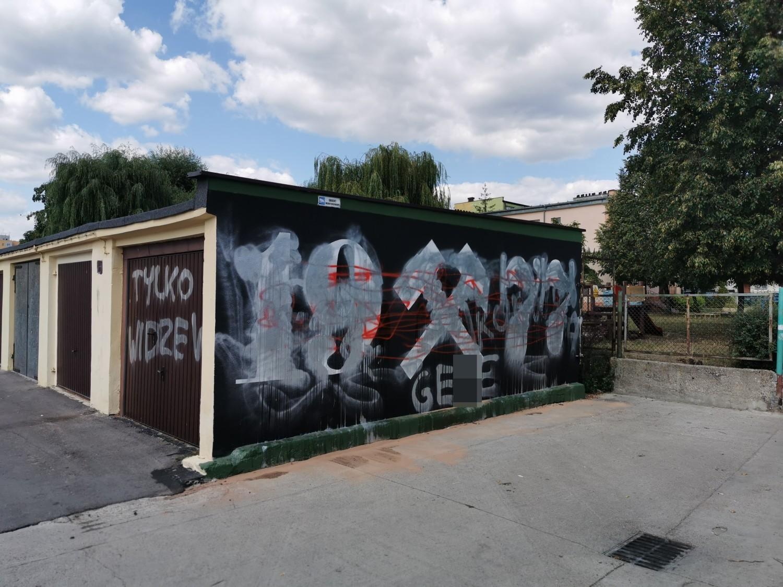 Wandale zniszczyli graffiti i pomalowali garaże. Interweniowała policja i straż pożarna [ZDJĘCIA]