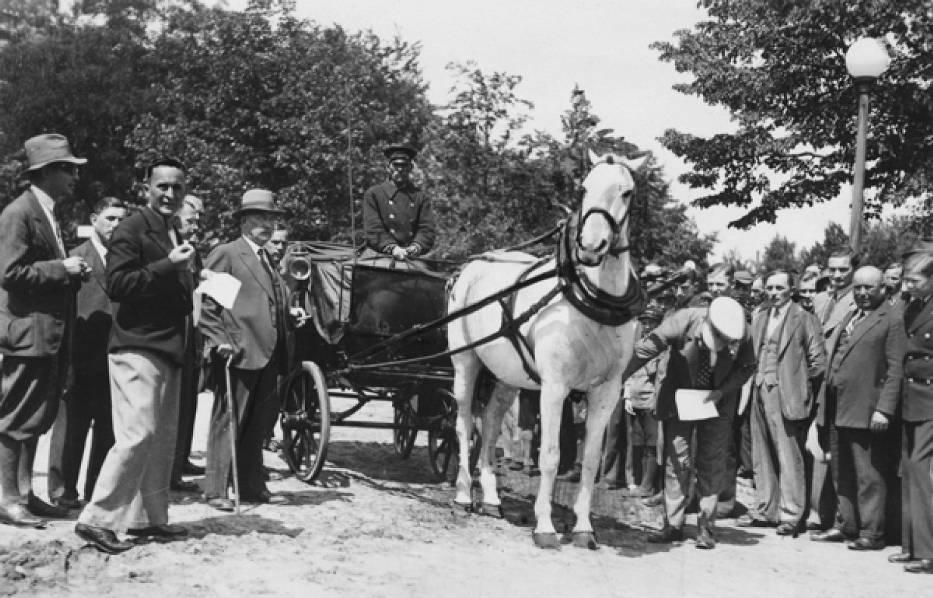(dorożka z najlepiej utrzymanym koniem podczas ostatnich oględzin inspektorów Towarzystwa. Lipiec 1934 r.)
