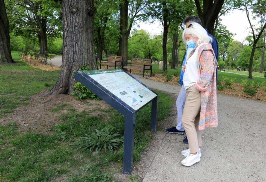 Zobacz, jak zmienił się Park Glazja w Toruniu. Oto najnowsze zdjęcia po rewitalizacji
