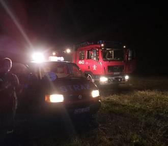 Strażacy ratowali tonącą w bagnie krowę. Zobaczcie zdjęcia