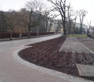 Odnowiona ulica Raduńska w Gdańsku Oruni. Nowe przejście dla pieszych w okolicy parku [zdjęcia]