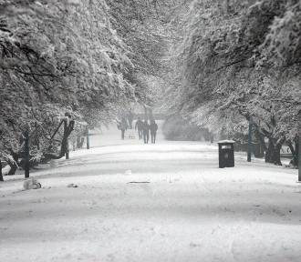 Będzie śnieżyca w Legnicy? Jest ostrzeżenie meteorologiczne