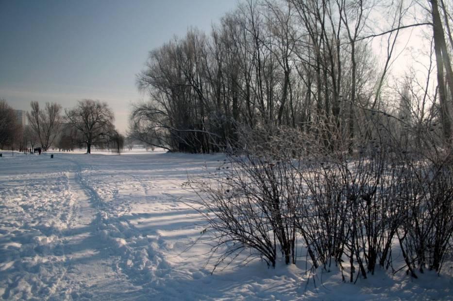 Park Skaryszewski położony na Pradze jest najładniejszym, ogólniedostępnym parkiem Warszawy
