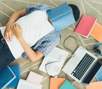 Studia – iść czy nie iść? Oto jest pytanie