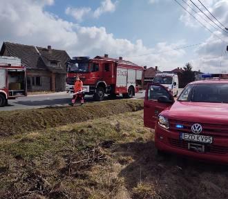 Straż pożarna w Zduńskiej Woli w ubiegłym tygodniu. Jakie były zdarzenia? ZDJĘCIA