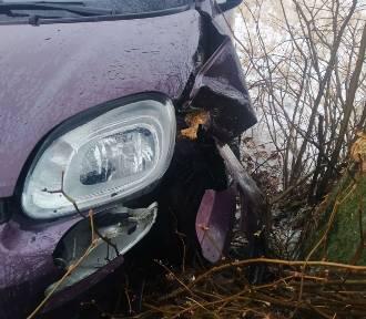 Gmina Gniezno. W Ganinie samochód wypadł z drogi i uderzył w drzewo [FOTO]