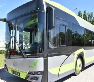 Po Pile już jeżdżą nowoczesne autobusy