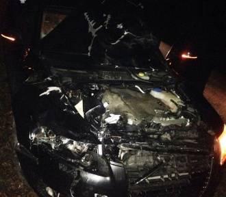 Ulów: 37-letni kierowca zderzył się z jeleniem. Zwierzę nie przeżyło