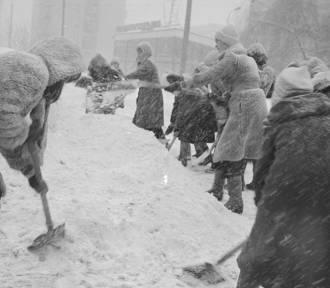 Zima stulecia w Polsce. Śniegu po pas, a nawet więcej! [ZDJĘCIA]