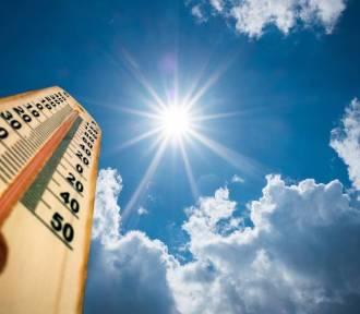 MeteoDozór podsumował rok 2019 w powiecie szamotulskim. Był on bardzo ciepły! [STATYSTYKA]