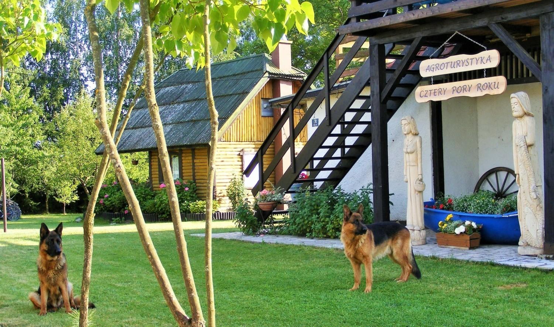 Grochowo w powiecie tucholskim, czyli wypoczynek w pięknych Borach Tucholskich, w domkach nad jeziorem
