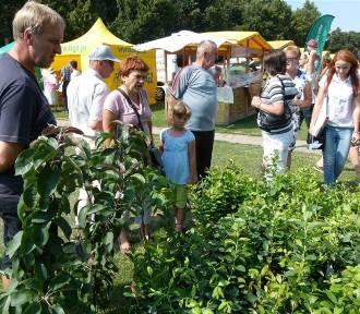 Wystawa rolno - przemysłowa w Zduńskiej Woli. Czas na zgłoszenia