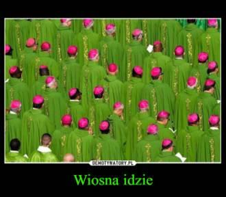 Wreszcie wiosna! Też się cieszycie? Zobaczcie wiosenne memy