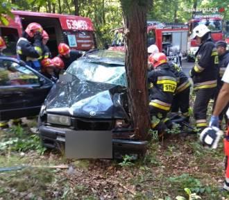 Tarnowskie Góry: Pijany 25-latek uderzył w drzewo