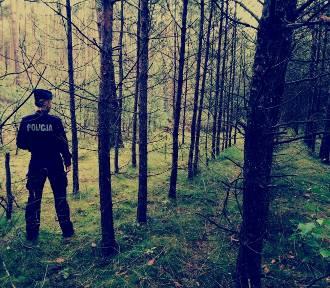 Tragedia była o krok! Trzy godziny 85-latka błądziła po lesie! A zapadał zmrok...
