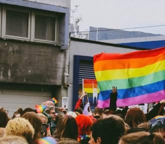 Slang LGBTQ. Czy dogadałbyś się z osobami innej orientacji [QUIZ]
